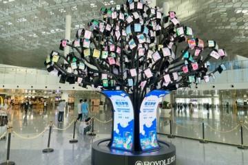 柔宇X音画举办六一儿童节画展,用科技让孩子的梦想点亮树梢